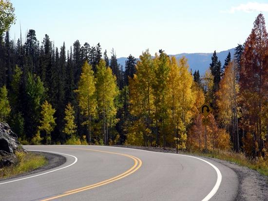 medidas-cinco-dirigir-estrada-primeira-vez-blog-ceabs